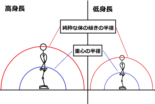 高身長と低身長を比較して傾いたときの半径の図