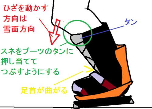 足首の曲げ方