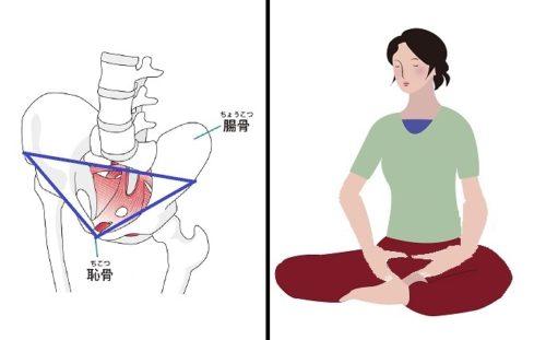 座位で骨盤を立てる方法